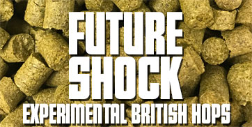 Link to Future Shock range of beers on Dwarfen Ales page