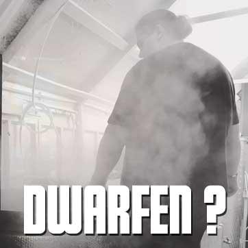 Link to Dwarfen? on Dwarfen? page